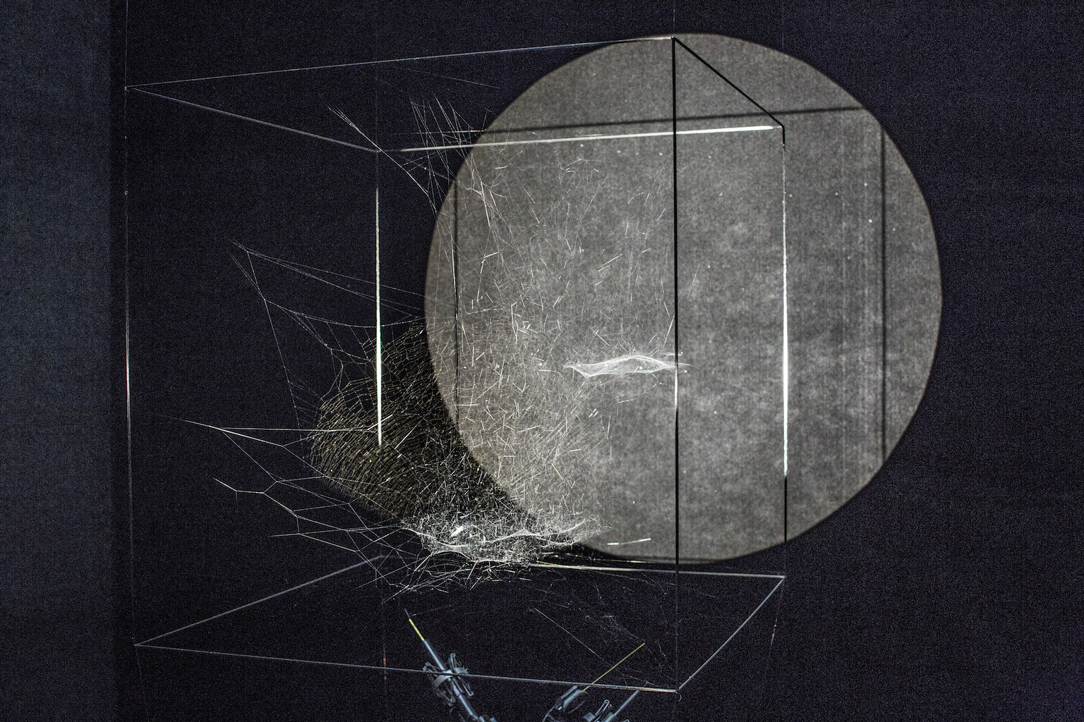 Tomás Saraceno Sonic Cosmic Webs Spider silk, cosmic dust, stellar wind, and projection 2016